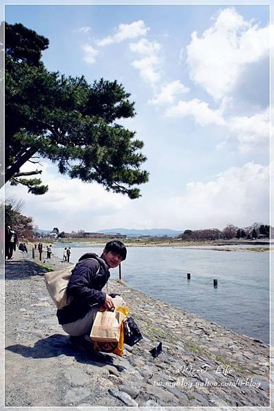 京都-嵐山 (22).JPG