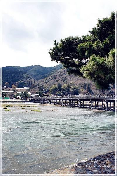 京都-嵐山 (24).JPG