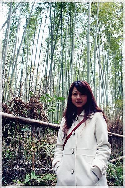 嵐山竹林 (1).JPG
