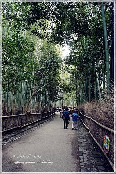 嵐山竹林 (2).JPG