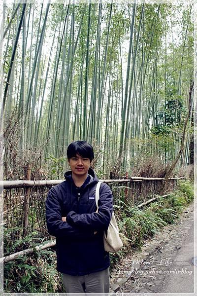 嵐山竹林 (3).JPG