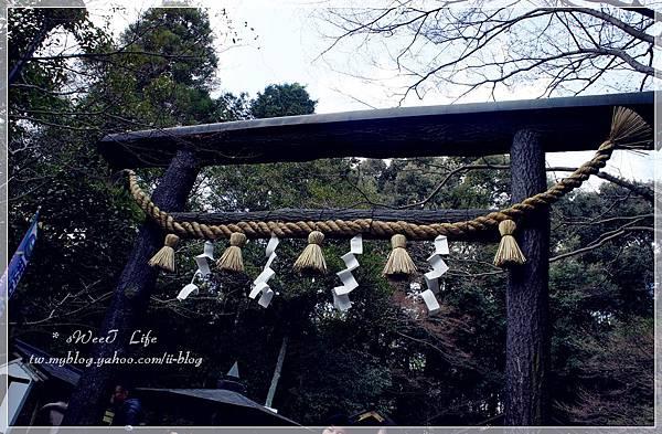嵐山-野宮神社 (5).JPG