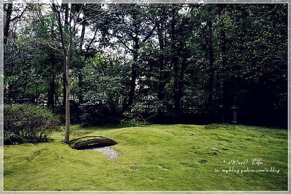 嵐山-野宮神社 (7).JPG