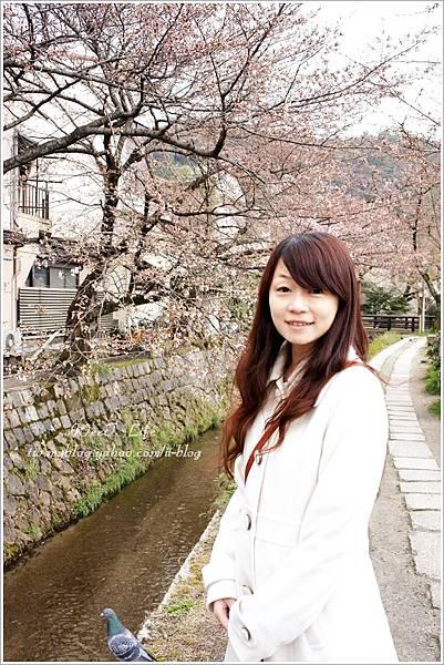【2012關西甜滋滋蜜月旅行】-哲學之道 (5).JPG