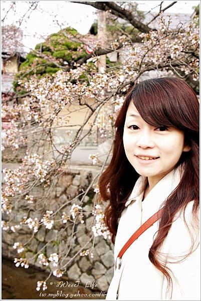 【2012關西甜滋滋蜜月旅行】-哲學之道 (6).JPG