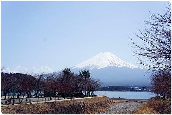 河口湖尋富士山 (1).jpg
