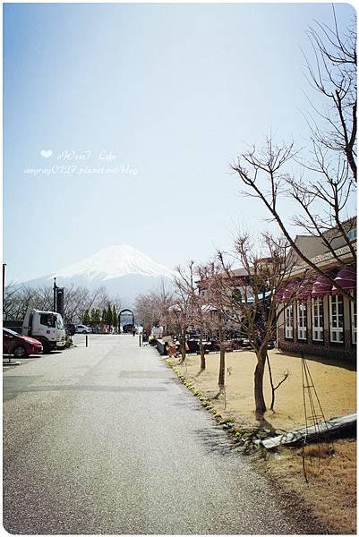 河口湖尋富士山 (37).JPG