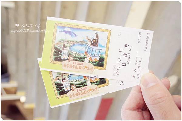 搭天上山纜車遠眺富士山 (35).JPG
