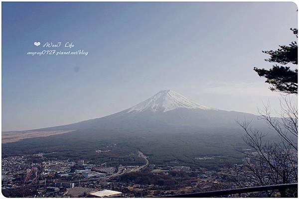 搭天上山纜車遠眺富士山 (4).JPG
