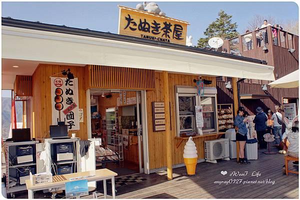 搭天上山纜車遠眺富士山 (5).JPG