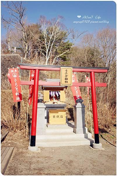 搭天上山纜車遠眺富士山 (8).JPG