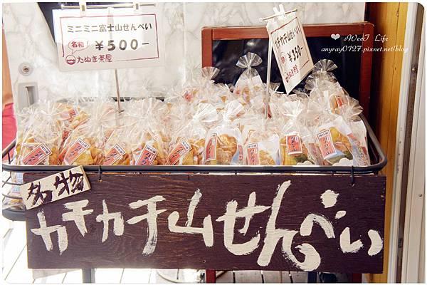 搭天上山纜車遠眺富士山 (10).JPG