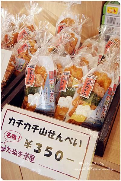 搭天上山纜車遠眺富士山 (13).JPG