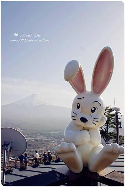 搭天上山纜車遠眺富士山 (17).JPG