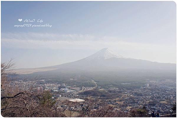 搭天上山纜車遠眺富士山 (18).JPG