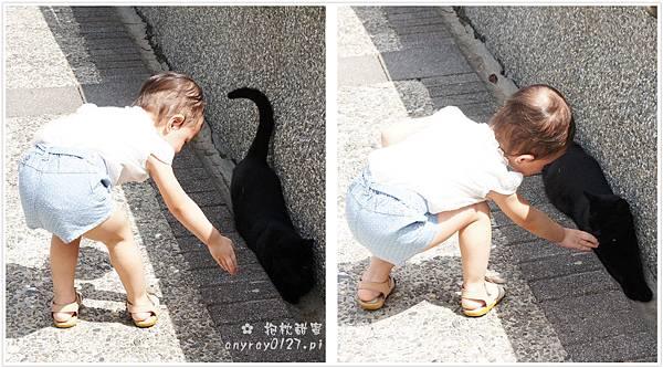 台北-猴硐貓村 (17).JPG