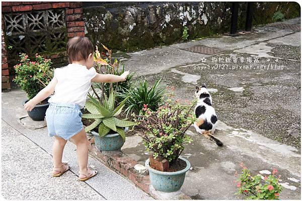 台北-猴硐貓村 (23).JPG