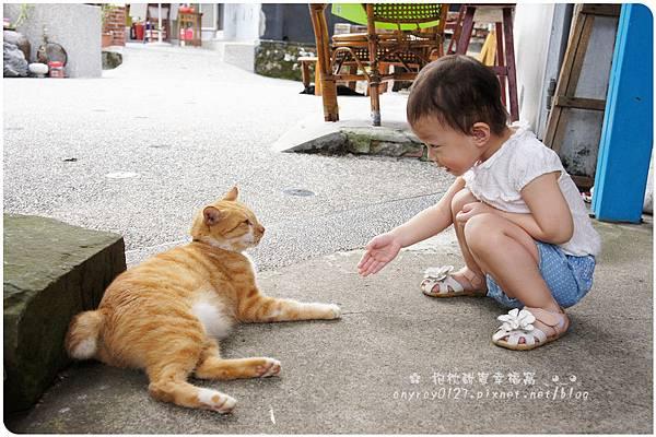 台北-猴硐貓村 (25).JPG