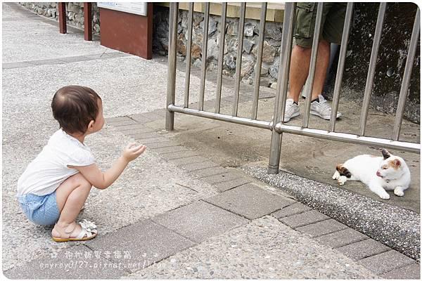 台北-猴硐貓村 (29).JPG
