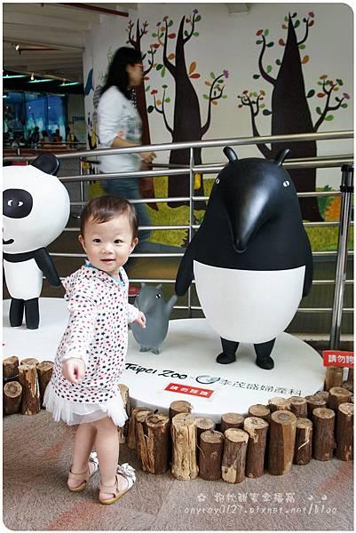 晴晴初遊木柵動物園 (28).JPG