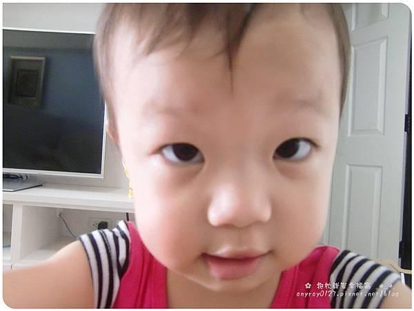 晴晴兒愛攝影 (11).JPG
