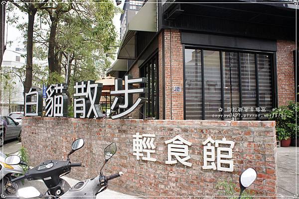 台中-白貓散步 (25).JPG