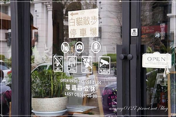 台中-白貓散步 (28).JPG