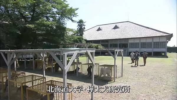 樺太犬研究所.jpg