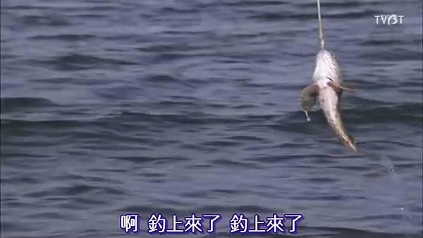 釣上來了.jpg