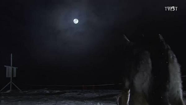 賞月.jpg