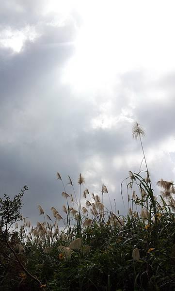 20111121_112201.jpg