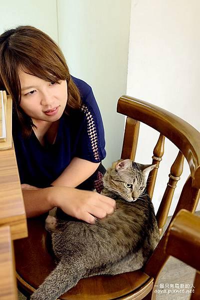台北貓咪先生的朋友33.jpg