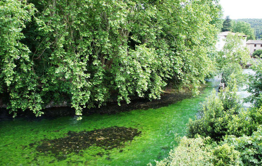 DSC01351-以一條碧綠的河流著名.JPG