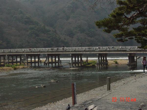 遠觀的渡月橋.JPG