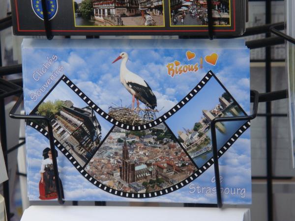 20090930這是送子鳥ㄅ....jpg