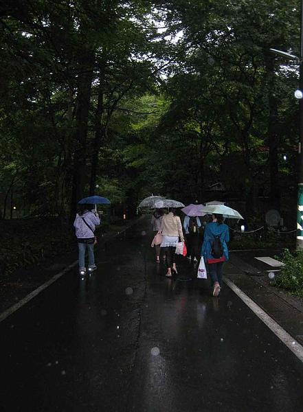 IMG_5110雨中趕路回輕井澤車站和民宿老闆碰頭...走著走著進入一片森林....天,也慢慢黑了.JPG