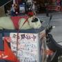 0410-77睡午覺的貓咪..主人還幫他掛牌.JPG