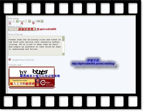 buxp_06.jpg