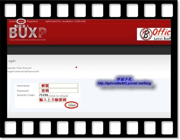 buxp_04.jpg