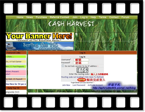 Cash-Harvest_03.jpg