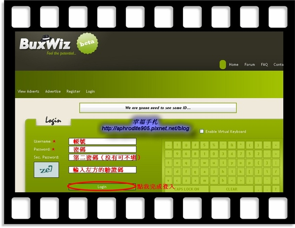 BuxWiz_05.jpg