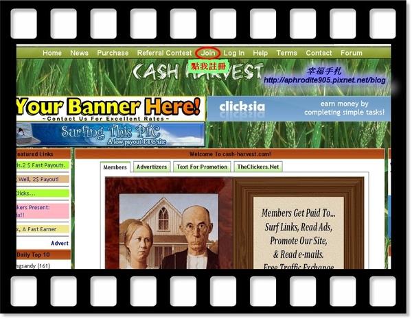 Cash-Harvest_01.jpg