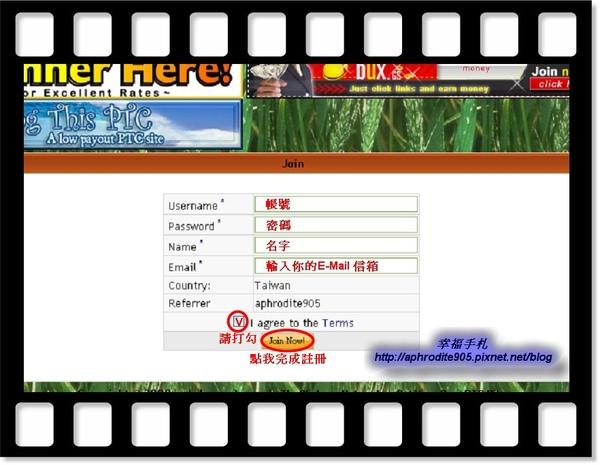 Cash-Harvest_02.jpg