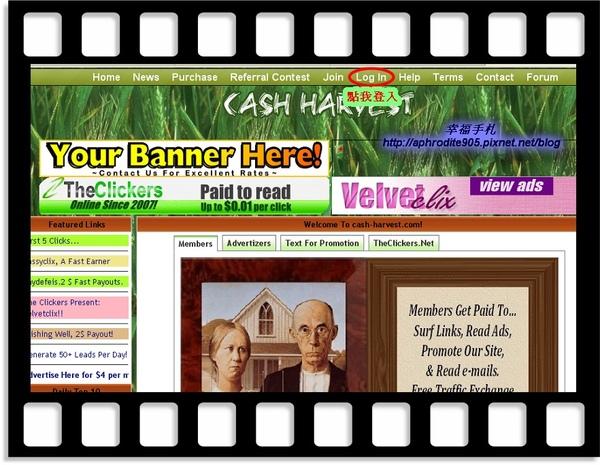 Cash-Harvest_06.jpg
