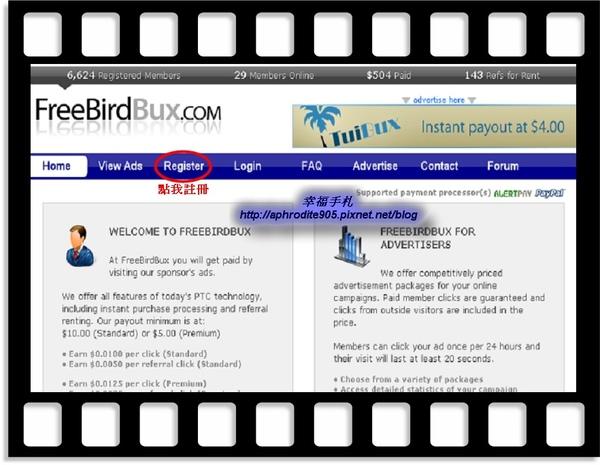 FreeBirdBux_01.jpg