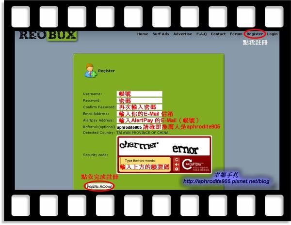 ReoBux_01.jpg