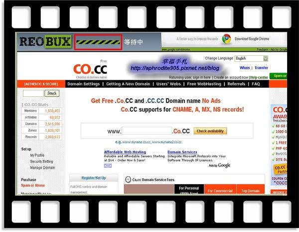 ReoBux_06.jpg