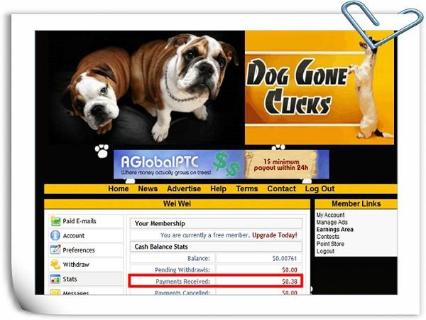 DogGoneClicks_01.jpg