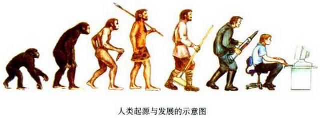 進化4.jpg