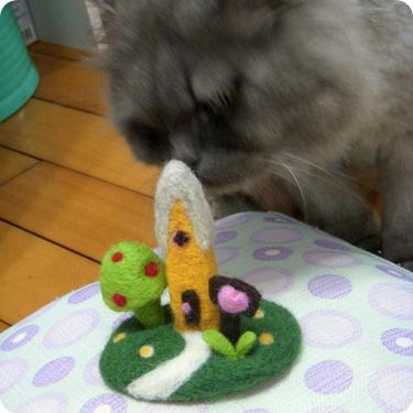 Mason喜歡羊毛味道